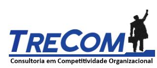 TRECOM – Consultoria em Competividade Organizacional